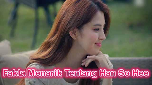 Fakta Menarik Tentang Han So Hee